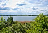 Lake Unteruckersee, Prenzlau, Uckermark, Brandenburg, Germany