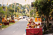 Decorated offering tables along a street, Tugu Br. Tinungan, Bali, Indonesia