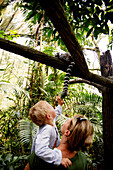 Mother and son watching at a ring-tailed lemur, Zoo, Singapore