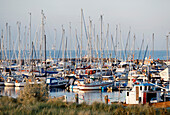 Yacht port in the evening, seaside resort of Kuehlungsborn at the Baltic Sea, Mecklenburg-Western Pomerania, Germany