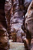 Woman hiking through a gorge, Wadi Mujib, Jordan, Middle East