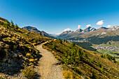 Hiking trail, Muottas Muragl, Pontresina, Upper Engadin, Canton of Graubuenden, Switzerland