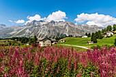 Houses in Val Flex, Sils-Maria, Upper Engadin, Canton of Graubuenden, Switzerland