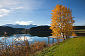 Landing stage, view over lake Forggensee to the Allgaeu Alps, Tegelberg, Allgaeu, Bavaria, Germany