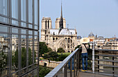 Notre Dame, View from Institut du monde arabe, Paris, France, Europe