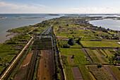 Aerial view of islands in the Venetian lagoon, Island of Sant' Erasmo, Veneto, Italy