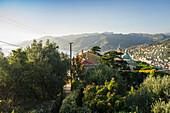 View to San Rocco, Camogli, province of Genua, Italian Riviera, Liguria, Italia
