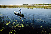 Man standing in a canoe and floating on the waters of the Okavango Delta, Botswana, Africa