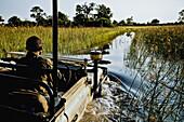 Game drive on Duba Island, Okavango Delta, Botswana, Africa