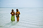Two algae farmers in shallow waters, Zanzibar, Tanzania, Africa