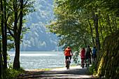 Cycle path along the Danube between Obermuehl and Schloegen, Austria