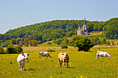 Landscape near Mont-devant-Sassey with church Notre Dame, XI th century, Vallée de Meuse, Dept. Meuse, Region Lothringen, France, Europe