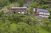 Matvik, Last abandonned farm in the fjord in 1961, Geiranger fjorden, Province of More og Romsdal, Vestlandet, Norway, Europe