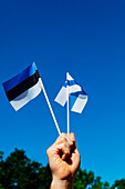 Boy holding the estonian and the finnish flags in his hand, Tallinn, Estonia, Baltic States