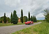 S.I.A.T.A., Daina Gran Sport Spider, 1952, Mille Miglia, 1000 Miglia, near San Quirico d'Orcia, Toskana, Italy, Europe