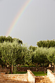 View towards a rainbow, Masseria, Alchimia, Apulia, Italy