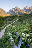 A young woman takes an early morning trail run in the Grand Teton National Park, Wyoming Wyoming, USA