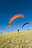 A paraglider finds the wind for a flight Jackson, Wyoming, USA