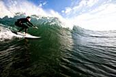 A male surfer does a bottom turn while surfing in Malibu Malibu, California, United States of America