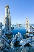 Interesting tufa formations at dusk in Mono Lake in the Eastern Sierra, California Mono Lake, California, USA