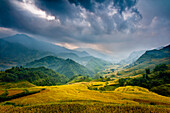 Rice paddies and mountains in mist and clouds.  Sapa, Vietnam, Asia Sapa, Vietnam