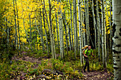 A young man hikes through a aspen forest in the fall colors on his way to climb a mountain Aspen, Colorado, USA