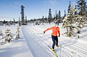 A young woman cross-country skiing Homer, Alaska, USA