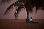 Man using a laptop while sitting at beach under a palm tree, Togbin Plage, Route des Peches, near Cotonou, Benin