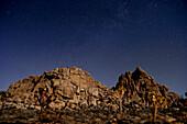 Stars in sky over desert, Joshua Tree, California, United States
