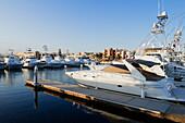 Yachts Moored in a Marina, Cabo San Lucas, Baja California, Mexico