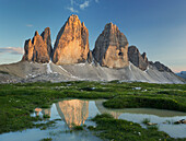 Tre Cime Di Lavaredo with reflection in a puddle, South Tyrol, Dolomites, Italy