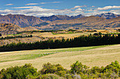 Landscape near Arrowtown, Otago, South Island, New Zealand