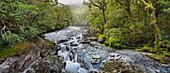 Cleddau River, The Chasm Gorge, Fiordland National Park, Southland, South Island, New Zealand