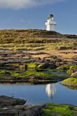 Waipapa lighthouse, Catlins, Southland, South Island, New Zealand
