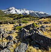 Mount Sefton, Mount Cook National park, Canterbury, South Island, New Zealand