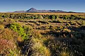 Mount Ngauruhoe, Tongariro Nationalpark, Manawatu-Manganui, North Island, New Zealand