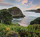 Taitomo Island, Lion Rock, Piha, Auckland, North Island, New Zealand