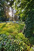 Flower beds, Doblhoff park, Baden near Vienna, Lower Austria, Austria