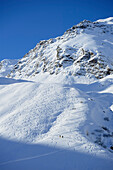 Downhill and uphill tracks of back-country skiers, Ellesspitze, Pflersch valley, Stubai Alps, South Tyrol, Italy