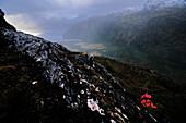 Mountaineer ascending to the base camp of Monte Sarmiento, Cordillera Darwin, Tierra del Fuego, Chile