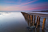 Groynes on the beach in the evening light, North Sea, Kampen, Sylt, Schleswig-Holstein, Germany