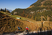 Mountain bikers off-roading, Berchtesgadener Land, Upper Bavaria, Germany