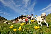 Frauen wandern auf der Eggenalm, Waidring, Tirol, Österreich