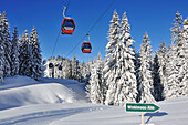 Overhead cable car, Winklmoosalm ski area, Reit im Winkl, Chiemgau, Bavaria, Germany