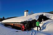 Cross-country skiers, Winklmoosalm, Reit im Winkl, Chiemgau, Bavaria, Germany