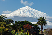 View to Teide, 3718m, the island´s landmark and highest point in Spain, volcanic mountain, Tenerife, Canary Islands, Spain, Europe