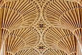 Vault in Bath Abbey, Bath, Somerset, England, Great Britain