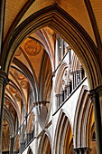 Vault in Salisbury Cathedral, Salisbury, Wiltshire, England, Great Britain
