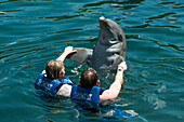 Two people swimming with a dolphin, Xel-Ha Water Park, Tulum, Riviera Maya, Quintana Roo, Mexico