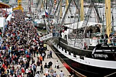 France, Normandy, Rouen, Armada is an ancient and historic sailing ships gathering on river Seine Banks hold every 5 years in june